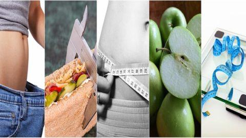 Une nouvelle étude révèle : la clé de la perte de poids est la qualité du régime alimentaire, pas la quantité
