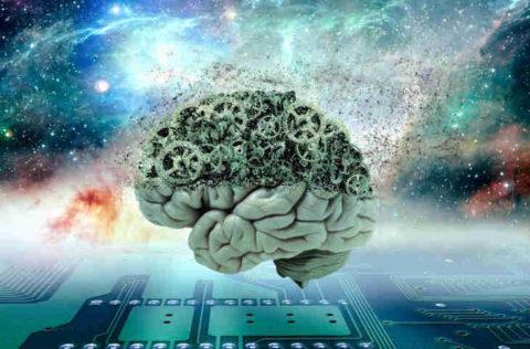 Des scientifiques de Harvard pensent avoir identifié la source de la conscience