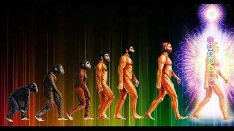 Évolution : preuve que nous devenons de vrais «dieux» !