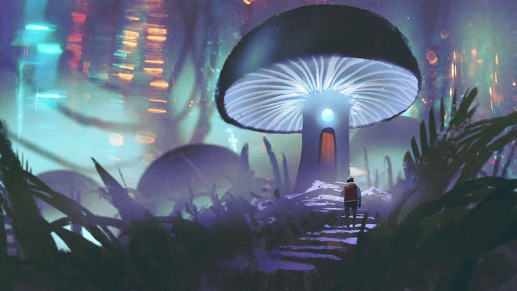 Le contournement de la spiritualité peut être nuisible pour le chemin de l'évolution spirituelle