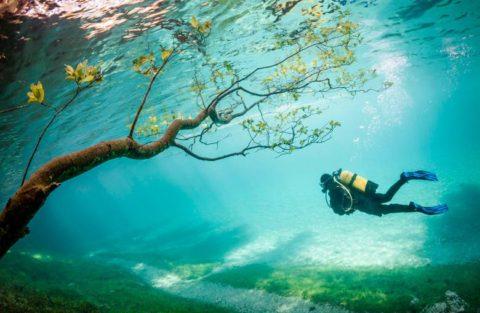 Lac Vert : un beau parc finit sous l'eau chaque année