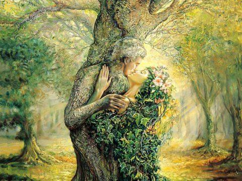 Tout ce qui est vivant est animé par la matrice de l'être: l'âme des arbres