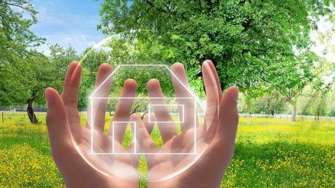 Soin de Nettoyage de votre Habitation et de votre terrain